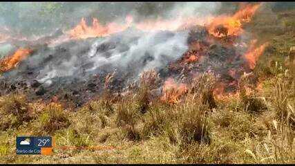 Bombeiros registram quase 9 mil incêndios florestais neste ano em Minas