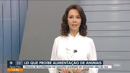 Câmara de Curitibanos deve reavaliar artigo que impede moradores de alimentar cães de rua
