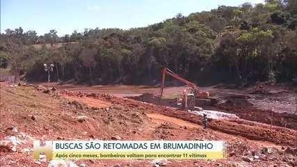Buscas foram retomadas em Brumadinho em agosto, após 5 meses de interrupção; ainda há 11 vítimas desaparecidas