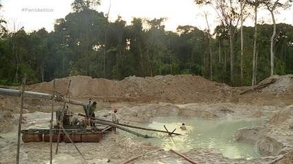 Toneladas de mercúrio entram clandestinamente no país para abastecer garimpo de ouro
