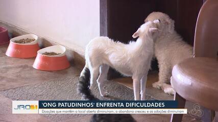 Abrigo de animais 'Ong Patudinhos'' enfrenta dificuldades