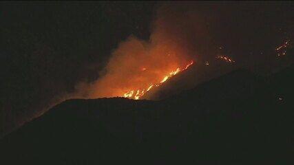 Chá de revelação causa incêndio florestal na Califórnia, nos EUA