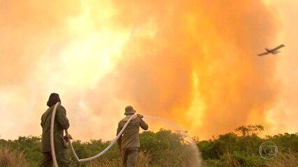 Queimadas se agravam no Pantanal de Mato Grosso
