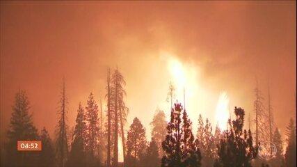 Quase 15 mil bombeiros tentam combater focos de incêndios florestais na Califórnia