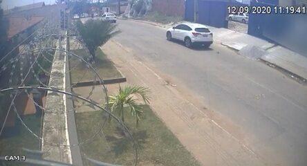 Vídeo divulgado mostrava momento em que gata caía em rua