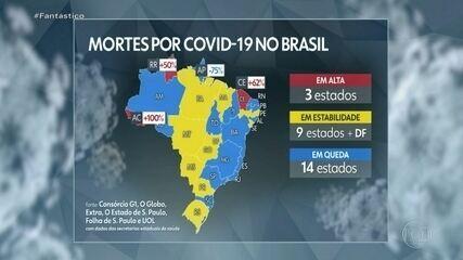 Brasil tem 131.663 mortes e 4.330.152 casos de Covid, aponta consórcio de imprensa