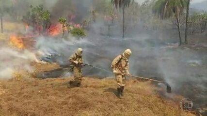 Mato Grosso do Sul entra em emergência por causa dos incêndios florestais