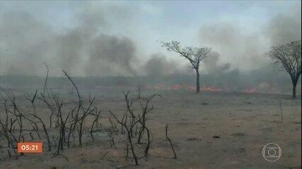 Governo promete liberar R$ 3,8 milhões para combater incêndios no Pantanal