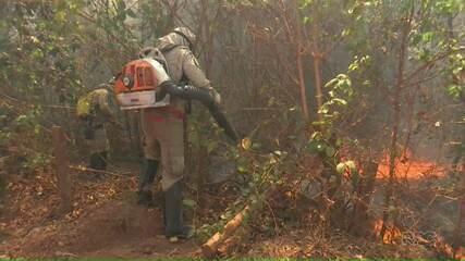 Bombeiros das regiões Oeste e Sudoeste ajudam no combate ao incêndio no Pantanal