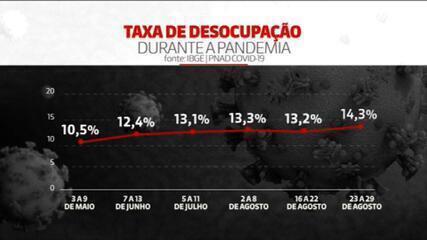 Taxa de desemprego no Brasil bate recorde na pandemia