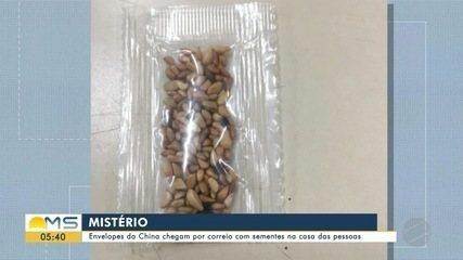 Envelopes da China chegam por correio com sementes na casa das pessoas