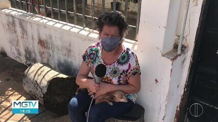 CCZ faz vacinação na região onde morcegos infectados pela raiva foram encontrados
