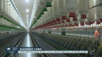 Produtores têxteis de Americana sentem reflexos da valorização do algodão no campo