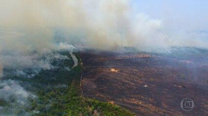 Fogo no Parque do Jalapão ameaça colheita de produto símbolo do Tocantins