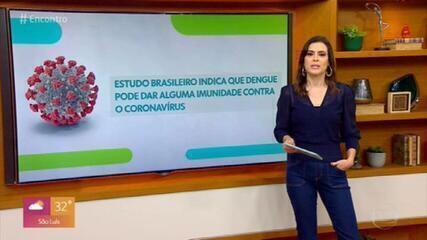 Estudo brasileiro sugere que Dengue pode dar alguma imunidade contra o coronavírus