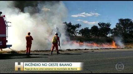 Fogo já dura uma semana no município de Barra, na Bahia