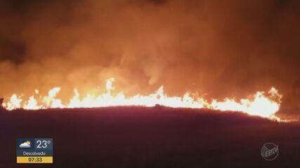 Incêndio de grandes proporções em Araraquara atinge Parque Pinheirinho