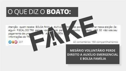 É #FAKE que mesário voluntário perde direito a auxílio emergencial e a Bolsa Família