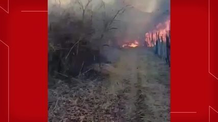 Incêndio atinge área de vegetação e chega próximo à residências em Sobral, no Ceará.