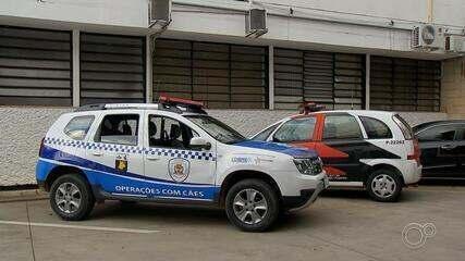 Guardas socorrem mulher estuprada por 12 homens em Itatiba