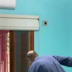 Casal encontra jiboia enrolada na cortina do quarto