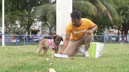 Pablo Vasconcelos passeia com Lilica em um dia ensolarado no parque