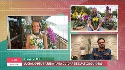Luciano Camargo aprende a cultivar orquídeas