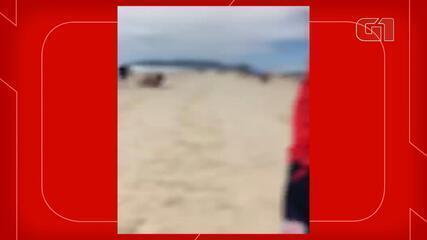 Vídeo mostra agressão a equipe da NSC TV durante reportagem em Florianópolis