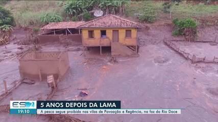Cinco anos após tragédia em MG, ES ainda amarga o prejuízo da lama no Rio Doce