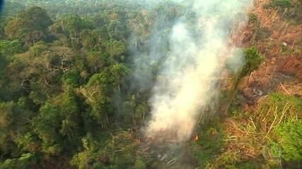Brasil é o quinto maior emissor de gases de efeito estufa do planeta