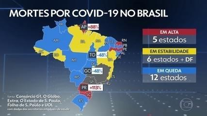 Brasil registra 204 mortes por Covid nas últimas 24 horas, mas sem dados de SP, RJ e MG
