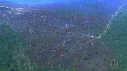 Dados do IMAZON mostram que o desmatamento em outubro foi o pior dos últimos 10 anos.