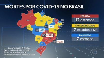 Brasil registra 620 mortes e 45.449 novos casos de Covid nas últimas 24 horas