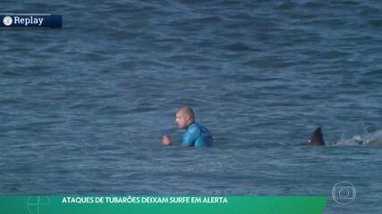 Ataques de tubarões deixam surfe em alerta
