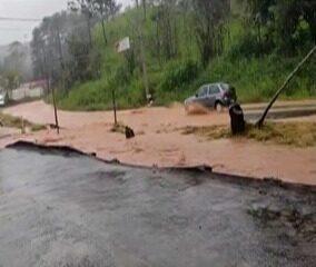 Chuva causa alagamento e queda de árvore em Mogi das Cruzes