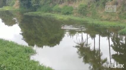 Mulher mergulha no Rio Ipojuca para recuperar dinheiro em Bezerros
