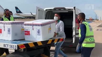Doses da vacina astrazeneca chegam ao Piauí