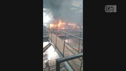 VÍDEO: fogo atinge fábrica da Jari Celulose, no sul do Amapá