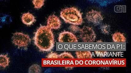 VÍDEO: o que já sabemos sobre a variante brasileira do coronavírus