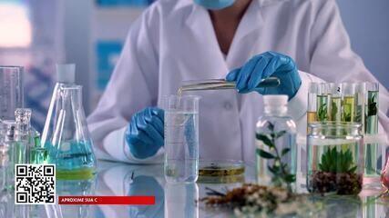 Ciência brasileira conseguiu adaptar a soja e outras culturas para o clima quente
