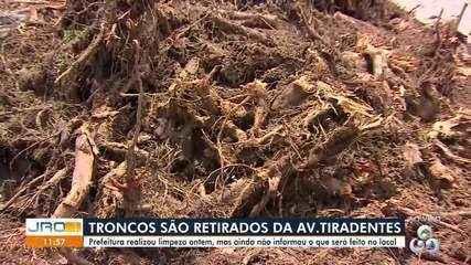 Prefeitura realiza limpeza e retira troncos da Av. Tiradentes