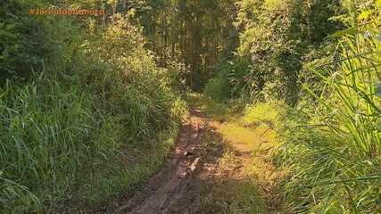 Menina de 13 anos é encontrada morta em Bom Princípio