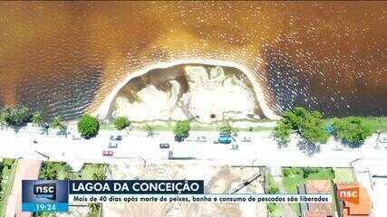 Banho e consumo de pescados na Lagoa da Conceição são liberados