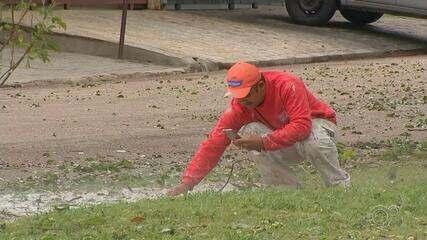 Jundiaí tem dia de limpeza após estragos provocados por chuva de granizo
