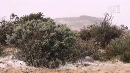 Neve volta a cair em Urupema na tarde desta segunda (28)