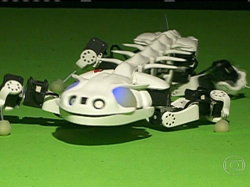 Robôs inspirados na natureza podem ajudar a ciência