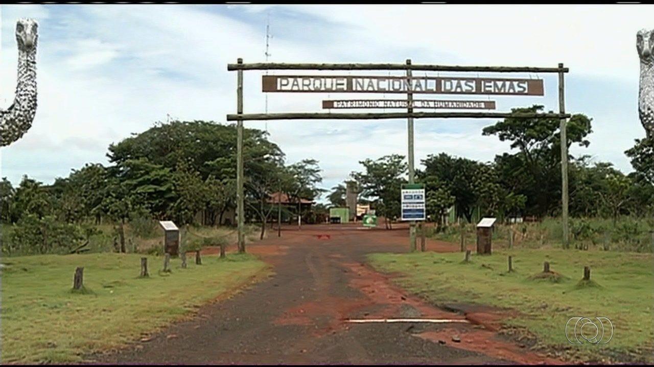 Sem funcionários, Parque Nacional das Emas foi fechado para visitação no início do ano