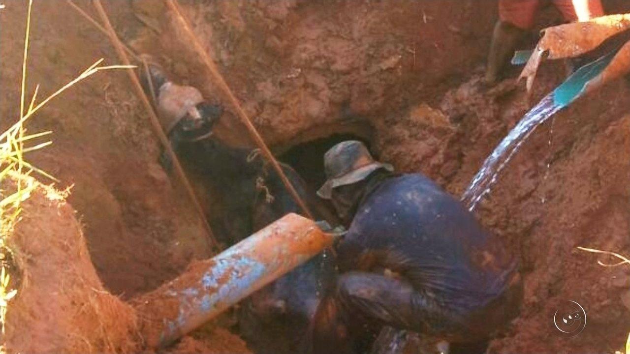 Vaca cai em buraco e mobiliza equipe dos bombeiros em Rio Preto