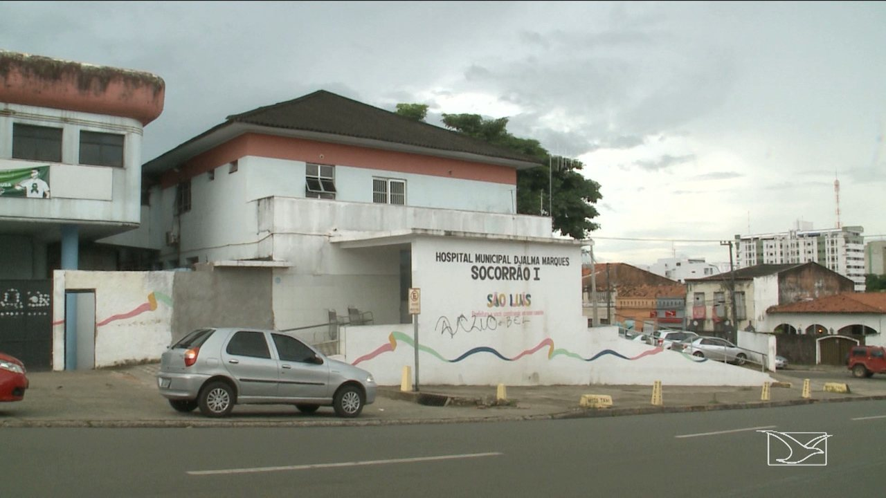 Três pessoas foram internadas após serem picadas por aranha em São Luís