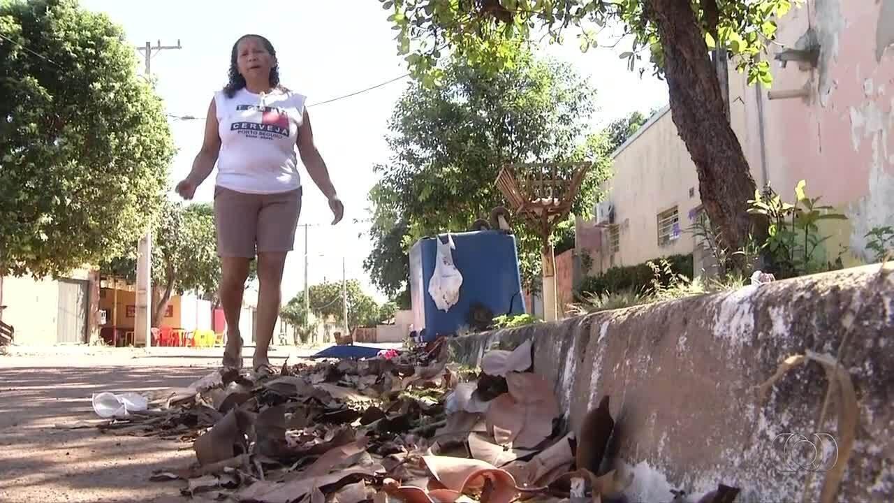 Moradores reclamam do lixo pelo setor Santa Bárbara, na região sul de Palmas